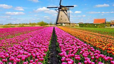 Esempi di playgrounds contemporanei in Olanda
